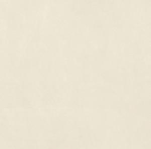 SANT'AGOSTINO CONCEPT LUX WHITE 60*60